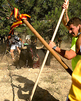 Men prepare to stab the bull during 'Toro de la Vega' festival, on September 13, 2011 in Tordesillas. The festival is one of the oldest in Spain with roots dating back to the fifteenth century. The bull has to be enticed across the river from the village to the plain 'Vega' before it can be killed to honour the 'Virgen de la Pena'.  © Pedro ARMESTRE.