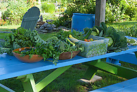 Small harvest from community garden, Yarmouth ME