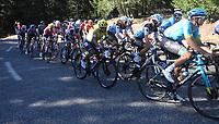 3rd September 2020; Le Teil to Mont Aigoual , France. Tour de France cycling tour, stage 6; Ef Higuita, Sergio Mont Aigoual