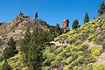 Spain, Gran Canaria, near Tejeda, Roque Nublo | Spanien, Gran Canaria, bei Tejeda, Roque Nublo