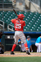 Washington Nationals Geraldi Diaz (25) at bat during an Instructional League game against the Miami Marlins on September 25, 2019 at Roger Dean Chevrolet Stadium in Jupiter, Florida.  (Mike Janes/Four Seam Images)