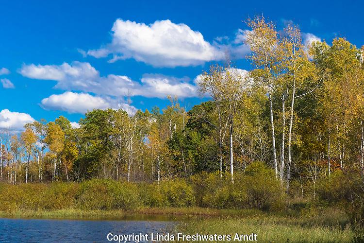 Pretty autumn day in Wisconsin
