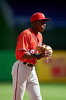 Washington Nationals Juan Pascal (19) during a Florida Instructional League game against the Miami Marlins on September 26, 2018 at the Marlins Park in Miami, Florida.  (Mike Janes/Four Seam Images)