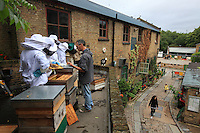 "Alessia Bolis, 41 years old. Every Saturday morning gives eight-week-long training courses in apiculture at the Hackney City Farm as part of the Capitalgrowth project. ""When I started beekeeping I was working in a museum in Pavia, I'm a specialist in ancient history. I started in Italy and I love urban beekeeping as well as teaching. For me, it's also about teaching responsibility to people who are attracted by bees... It's fashionable today! Otherwise, the rest of the year I work for a company that helps commercial enterprises where my task is developing projects."""