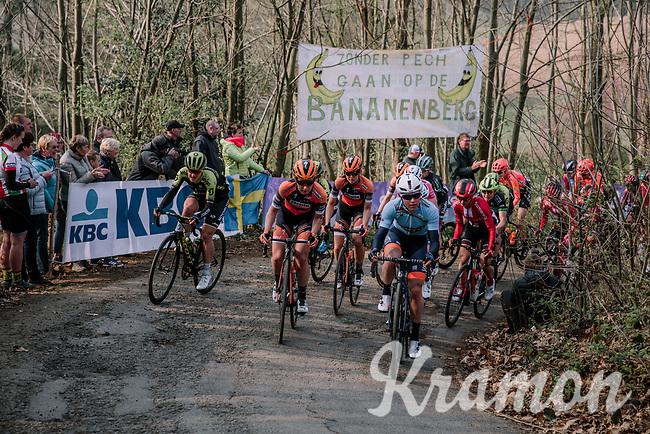 Peloton climbing the Baneberg for the first time; Mitchelton Scott, Boels Dolmans & Team Sunweb at the front<br /> <br /> 8th Gent-Wevelgem In Flanders Fields 2019 <br /> Elite Womens Race (1.WWT)<br /> <br /> One day race from Ypres (Ieper) to Wevelgem (137km)<br /> ©JojoHarper for Kramon