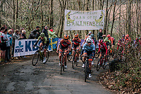 Peloton climbing the Baneberg for the first time; Mitchelton Scott, Boels Dolmans & Team Sunweb at the front<br /> <br /> 8th Gent-Wevelgem In Flanders Fields 2019 <br /> Elite Womens Race (1.WWT)<br /> <br /> One day race from Ypres (Ieper) to Wevelgem (137km)<br /> ©JojoHarper for Kramon
