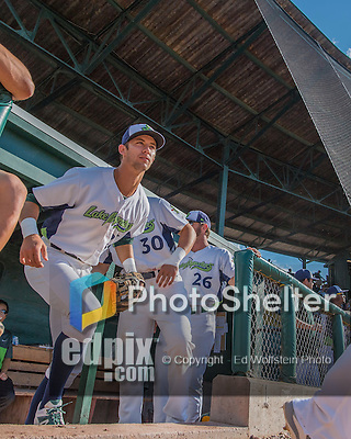 31 July 2016: Vermont Lake Monsters infielder Eli White emerges from the dugout to take the field facing the Connecticut Tigers at Centennial Field in Burlington, Vermont. The Lake Monsters edged out the Tigers 4-3 in NY Penn League action.  Mandatory Credit: Ed Wolfstein Photo *** RAW (NEF) Image File Available ***