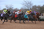 20 February 2009: Conveyance with jockey Martin Garcia wins The Southwest at Oaklawn in Hot Springs, Arkansas