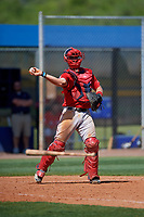 Boston Red Sox catcher Kole Cottam (29) throws to first base during a Minor League Spring Training game against the Tampa Bay Rays on March 25, 2019 at the Charlotte County Sports Complex in Port Charlotte, Florida.  (Mike Janes/Four Seam Images)