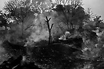 Trees and the grass are dying in the coal mine fire affected area. A huge coal mine fire is engulfing the city of Jharia from all its sides. All scientific efforts have gone in vain to stop this raging fire. This fire is affecting lives of people living in and around Jharia. Jharkhand, India. Arindam Mukherjee