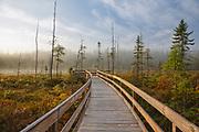 Pondicherry Wildlife Refuge - Mud Pond in Jefferson, New Hampshire  on a foggy autumn morning.