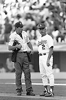 Los Angeles Dodgers manager Tommy Lasorda during a 1989 season game at Dodger  Stadium in Los Angeles,California.(Larry Goren/Four Seam Images)