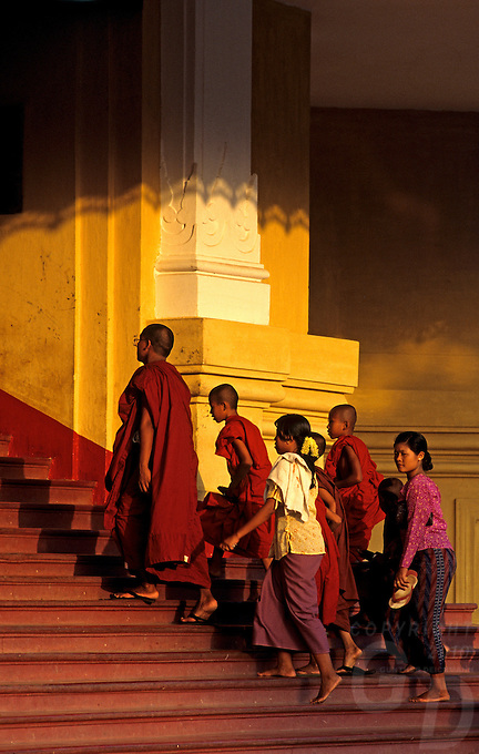 The late afternoon light on the pagoda stairs, a group of traditional burmese and buddhist Monks,Yangon, Burma, Myanmar