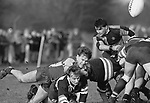 Rugby Archive