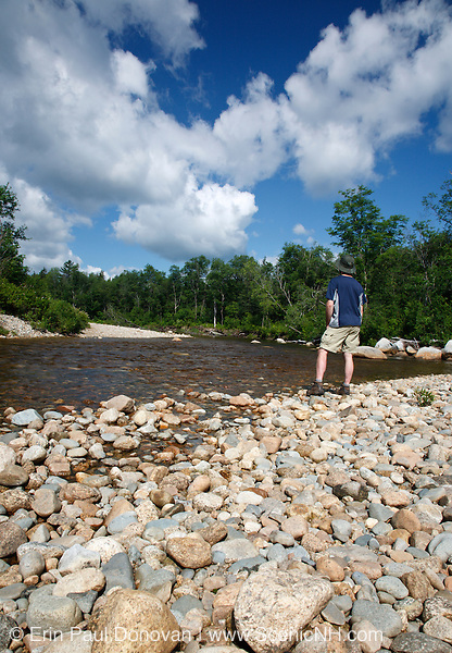 Man standing on the side of the Ammonoosuc River in Carroll, New Hampshire.