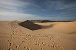 Footprints and ATV tire tracks stretch across the white dunes, about 30 kilometers north of Mui Ne, Vietnam. Nov. 16, 2011.