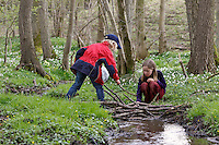 Kinder spielen am Bach, Frühling, bauen kleinen Staudamm aus Ästen