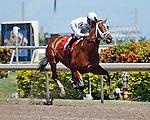Gemologist with jockey Javier Castellano up winning his 2012 debut by 7 lengths. Gulfstream Park. Hallandale Beach, Florida. 03-16-2012