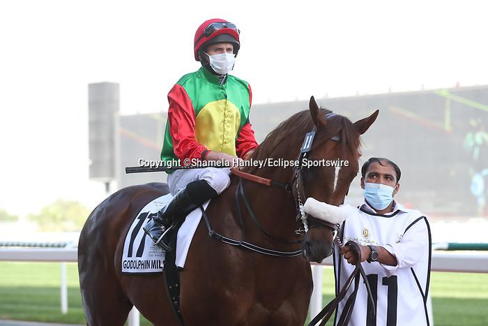 March 27, 2021: ROMAN ROSSO(ARG) #11 in the post parade for the Godolphin Mile on Dubai World Cup Day, Meydan Racecourse, Dubai, UAE. Shamela Hanley/Eclipse Sportswire/CSM