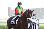 March 27, 2021: ROMAN ROSSO(ARG) #11 in the post parade for the Godolphin Mile on Dubai World Cup Day, Meydan Racecourse, Dubai, UAE. Shamela Hanley/Eclipse Sportswire/CSM