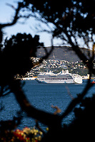 The cruise ship Explorer Dream arrives in Wellington, New Zealand on Wednesday, 13 december 2019. Photo: Dave Lintott / lintottphoto.co.nz