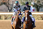 November 7, 2020 : Gamine, ridden by John Velazquez, wins the Filly & Mare Sprint on Breeders' Cup Championship Saturday at Keeneland Race Course in Lexington, Kentucky on November 7, 2020. Wendy Wooley/Breeders' Cup/Eclipse Sportswire/CSM
