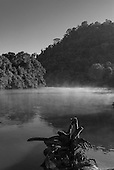 Pará State, Brazil. Aldeia Pukararankre (Kayapo). Early morning at the river. Xingu.
