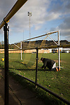 Alvechurch FC 3 Highgate United 0, 26/12/2016. Lye Meadow, Midland Football League Premier Division. The groundsman fixes a goal net at Lye Meadow before Alvechurch hosted Highgate United in a Midland Football League premier division match. Originally founded in 1929 and reformed in 1996 after going bust, the club has plans to move from their current historic ground to a new purpose-built stadium in time for the 2017-18 season. Alvechurch won this particular match by 3-0, watched by 178 spectators, taking them back to the top of the league. Photo by Colin McPherson.