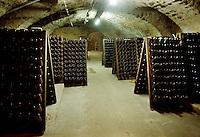 Bottiglie in una cantina a Deidesheim lungo la strada del vino.Bottles in a cellar in Deidesheim along the wine route