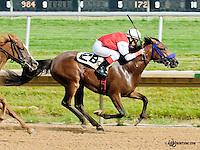 Fullof Foolish Nhess winning at Delaware Park on 6/22/13