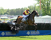 Tizsilk, seen here in the Queens Cup,  tries to reverse his fortune in the National Hunt Cup at Radnor.