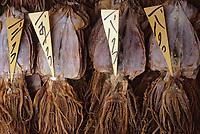 Asie/Japon/Tokyo/Tsukiji: Le marché aux poissons - Détail de poulpes séchés
