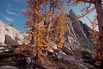 Alpine Lakes Wilderness Area, Enchantment Lakes, Prussic Peak, Cascade Mountains, Washington State, Pacific Northwest, U.S.A., Autumn, Larch trees,