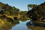 Miombo woodland along Shishamba River, Kafue National Park, Zambia