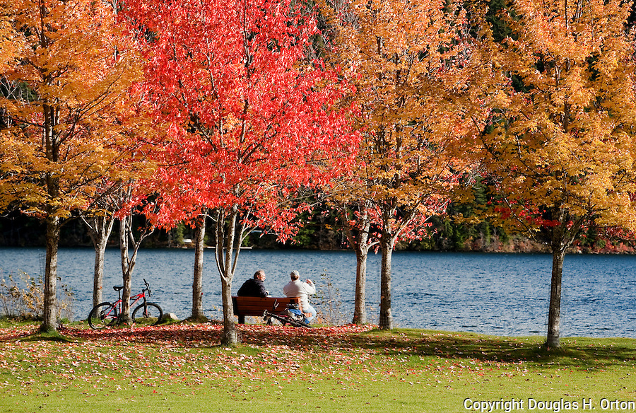 Two friends visit in Rainbow Park, on Alta Lake, Whistler, British Columbia.  Alta Lake Park provides stunning views of Whistler Mountain.  Whistler and Blackcomb, British Columbia, Canada are regal in fall color during September and October.