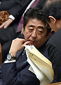 Shinzo Abe Attends Q&A Session of Budget Committee