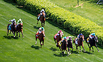 May 3, 2014: The field enters the home stretch of the Churchill Distaff Turf Mile S. (Grade II) stakes on Kentucky Derby Day at Churchill Downs in Louisville, KY. Jon Durr/ESW/CSM