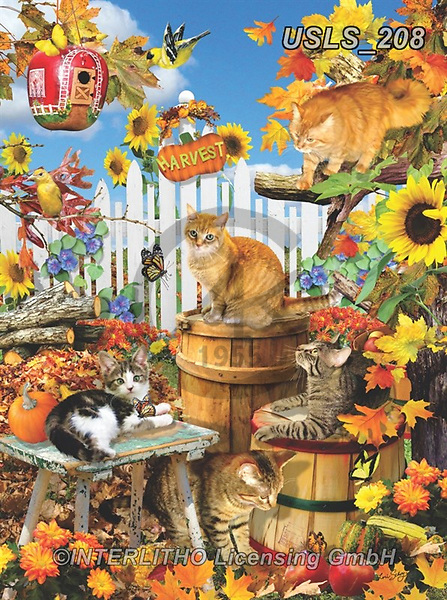 Lori, REALISTIC ANIMALS, REALISTISCHE TIERE, ANIMALES REALISTICOS, zeich, paintings+++++Harvest Kitties_4_12in_72,USLS208,#a#, EVERYDAY ,puzzle,puzzles