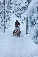 Europe/Finlande/Laponie/Kongäss: Raid en traineau à chiens au  Levi - Husky Park