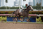 January 24, 2015: Gorgeous Bird with Joel Rosario up wins an Allowance Optional Claiming race for 3 year olds at Gulfstream Park. Gulfstream Park, Hallandale Beach (FL). Arron Haggart/ESW/CSM