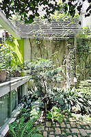 A corner of a contemporary garden with rustic style small paving stones and a variety of foliage textures.