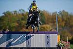 Our Questionnaire, with rider Heather  Gillette (USA), competes during the Cross Country test during the Fair Hill International at Fair Hill Natural Resources Area in Fair Hill, Maryland on October 20, 2012.