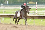 07 09 2009: Gone Astray & Eddie Castro win the30th running of the $1,000,000 Grade II Pennsylvania Derby at Philadelphia ark, Bensalem, Pennsylvania