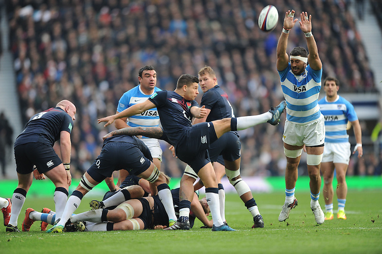 Ben Youngs of England sends up a box kick as Javier Ortega Desio of Argentina attempts to block during the Old Mutual Wealth Series match between England and Argentina at Twickenham Stadium on Saturday 26th November 2016 (Photo by Rob Munro)