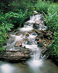Stream in forest in the Indian Peaks Wilderness Area, Nederland, Colorado. .  John leads private photo tours throughout Colorado. Year-round Colorado photo tours.