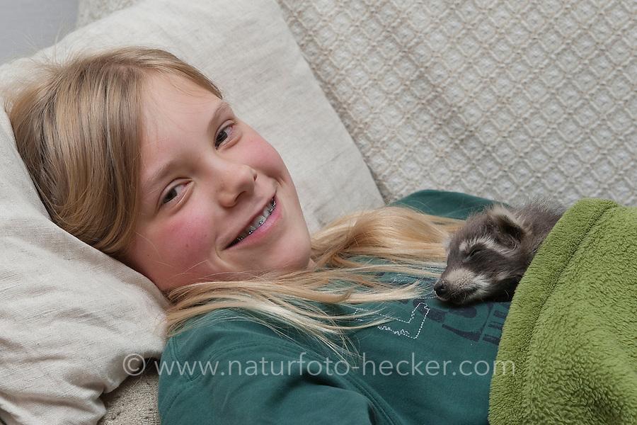 Waschbär-Baby und Mädchen, Kind schlafen gemeinsam unter einer Decke, Waschbär, Jungtier wird von Hand aufgezogen, verwaistes Jungtier, Aufzucht eines Wildtieres, Tierkind, Tierbaby, Tierbabies, Waschbaer, Wasch-Bär, Procyon lotor, common raccoon