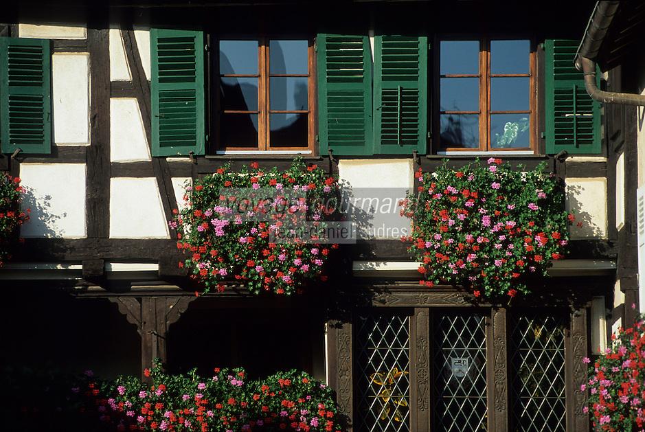 Europe/France/Alsace/68/Haut-Rhin/Eguisheim : Habitat traditionnel