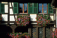 Europe/France/Alsace/68/Haut-Rhin/Eguisheim : Habitat traditionnel