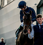 September 14, 2019 : A horse heads to the track for the Coolmore Fastnet Matron during Irish Champions Weekend Day One at Leopardstown Racecourse in Dublin, Ireland. Scott Serio/Eclipse Sportswire/CSM