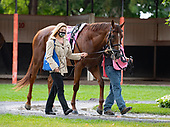 9th Sword Dancer Stakes - Channel Maker